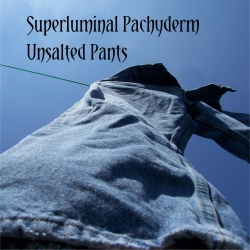 Unsalted Pants cover